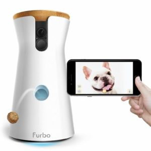 Best Pet Camera To Buy In 2019